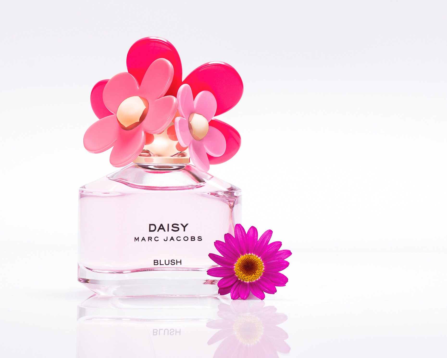 Fragrance Daisy Blush - Christophe Benard Photography - Edmonton Commercial Photographer, Edmonton Commercial Photography, Edmonton Product Photographer, Edmonton Product Photography, Still Life Photographer in Canada, Product Photographer in Canada